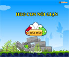 Heo con nổi giận